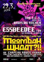 Moombah... What?!!