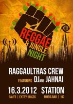 Reggae & Jungle Night