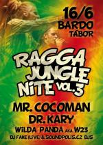 Ragga Jungle Nite vol.III