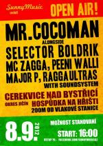 Reggae open air party